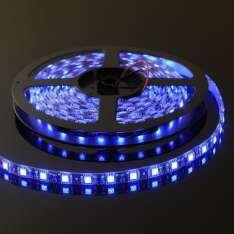 Taśma LED-5050 300 Niebieska 10mm wod.